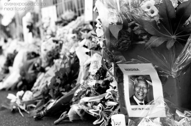 Mandela-100278