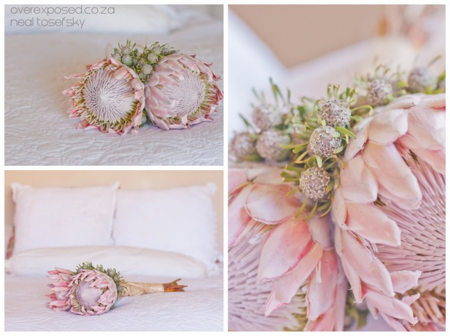 Carla_Colin-10531-flowers
